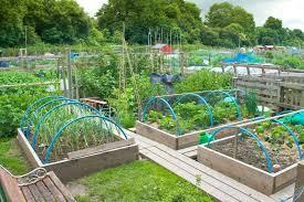 Veggie Garden Design Ideas Vegetable Garden Design Drawing Image Of Vegetable Garden Design