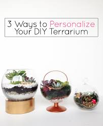 3 ways to personalize your diy terrarium gold standard workshop