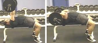 Bench Press For Biceps - arm exercises bicep exercises tricep exercises