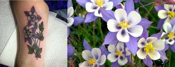 columbine flowers columbine flower tattoos staciemayer