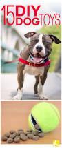 best 25 interactive dog toys ideas on pinterest diy dog toys
