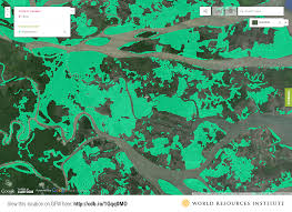 Satellite Map Of Washington State by Satellite Data Reveals State Of The World U0027s Mangrove Forests