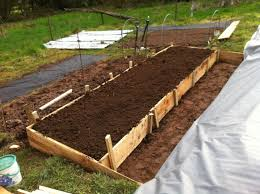 Mulching Vegetable Garden by The Birth Of A New Vegetable Garden Vegging Out With Adam