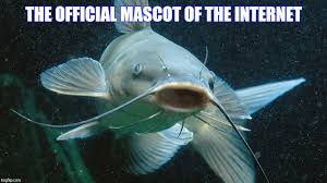 Trust No One Meme - image tagged in memes catfish trust no one imgflip