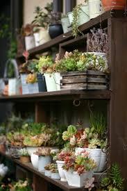 small japanese style garden ideas