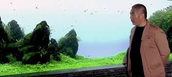 amano aquascape aquascaping guru takashi amano has at 61 reef2reef