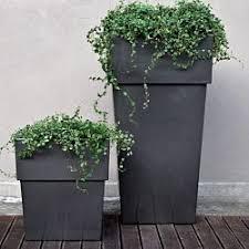 25 unique large outdoor planters ideas on pinterest garden