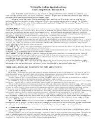 college application resume sample doc 12751650 personal essay examples for college application good college application essay samples examples of good college personal essay examples for college application 65966elizabethhardwickessaysjpg