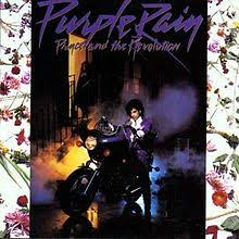 purple photo album purple album
