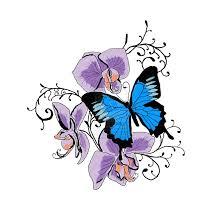 orchid butterfly on back photos pictures and sketches