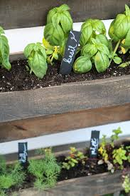 How To Build An Herb Garden Save Time And Money With A Vertical Pallet Herb Garden