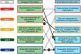 sustainability free full text a social ecological framework