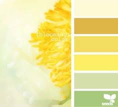 Yellow Color Combinations 7 Best Web Color Palettes Images On Pinterest Color Palettes