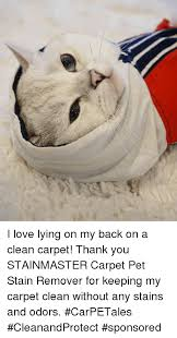 Carpet Cleaning Meme - 25 best memes about carpet cleaning carpet cleaning memes