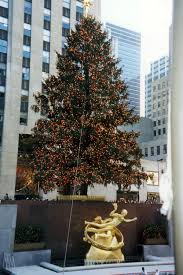 nyc rockefeller center christmas tree and prometheus flickr