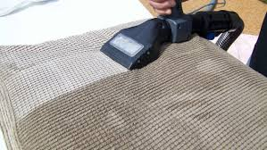 sofa cleaning san jose all green carpet clean same day carpet cleaning service