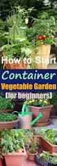 pots in gardens ideas growing vegetables in pots best container vegetable gardening