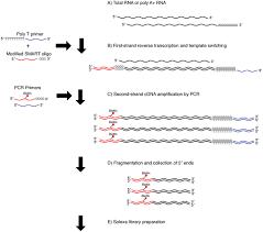 four methods of preparing mrna 5 u2032 end libraries using the illumina