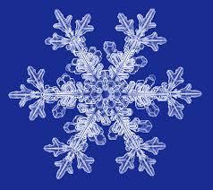 snowflake bentley snowflake photographs snowcrystals com a snowflakes 雪花