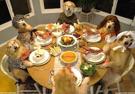 Memes Thanksgiving - dog thanksgiving meme generator imgflip