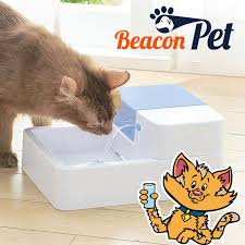 online buy wholesale water fountain pet from china water fountain