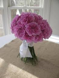 Purple Carnations Die Besten 25 Purple Carnation Bouquet Ideen Auf Pinterest Lila