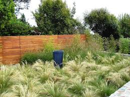 Backyard Ideas Without Grass Backyard Ideas Without Grass Landscape Contemporary With Wood