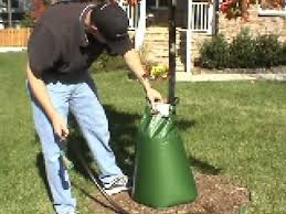 treegator original release watering bag for trees