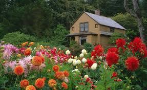 20 flower garden landscape ideas houz buzz
