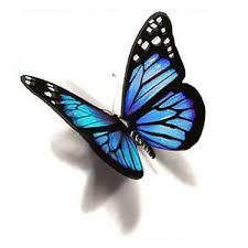 blue 3d butterfly design butterfly designs