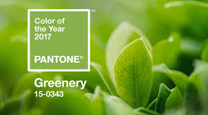 pantone colors of the year 2017 greenery announced pantone u0027s color of the year 2017 shop lc