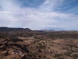 plant communities environmental nature center chihuahuan desert nature center u2013 travelling texans