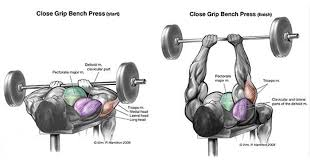 Starting Weight Bench Press The Close Grip Or Narrow Grip Bench Press Effectively Works The