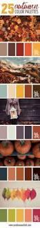 the 25 best pantone chart ideas on pinterest pantone color