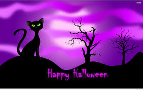 halloween background green happy halloween sweet background with a cat