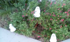 cool halloween yard decorations halloween with buycostumes com it u0027s time to decorate