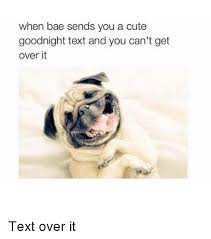 Goodnight Meme Cute - 25 best memes about cute goodnight cute goodnight memes
