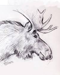 moose a little sketch i did during my edmonton sketch grou u2026 flickr
