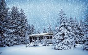 merry winter snow beautiful tree gift santa hd