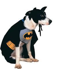 Batman Halloween Costume Batman Halloween Costumes