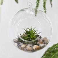 hanging glass balls wholesale uk free uk delivery on hanging