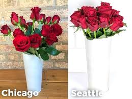 cheap flower delivery 20 cheap flowers delivered 20 florist in flower delivery for