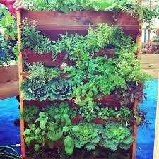 vertical vegetable gardening layout vertical vegetable gardening