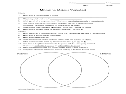 Meiosis Matching Worksheet Answers Image Gallery Mitosis Worksheet
