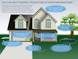 Eliminate Mosquitoes In Backyard by Mosquito Treatment