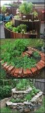 How To Make A Moss Wall by 25 Best Spiral Garden Ideas On Pinterest Garden Ideas Diy