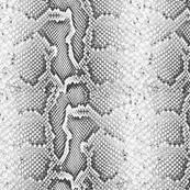 snake skin fabric wallpaper u0026 gift wrap spoonflower