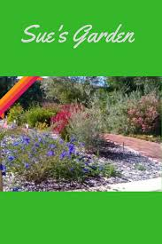 recommended plants archives australian native nursery