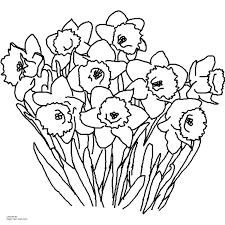 printable spring flowers daffodil spring flower coloring page printable free coloring books