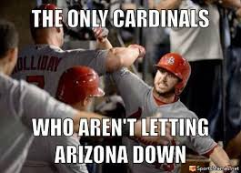 Anti 49ers Meme - arizona cardinals memes